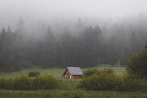 Read more about the article How To Truly Go Off-Grid With A Tiny House: No Half Measures